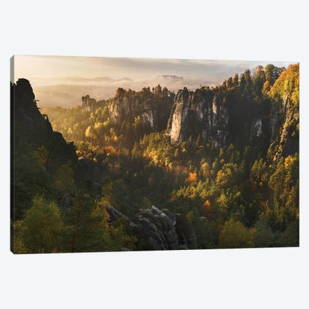 Forest Whispers Canvas Print #OXM2630} by Karsten Wrobel Art Print