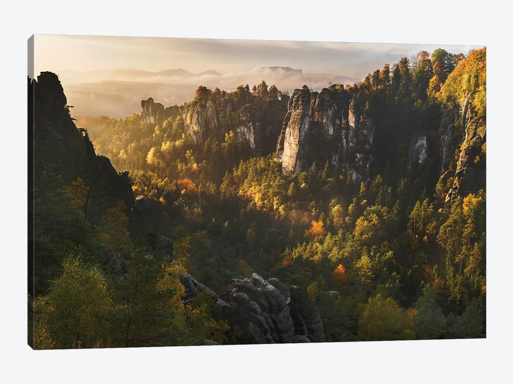 Forest Whispers by Karsten Wrobel 1-piece Canvas Artwork