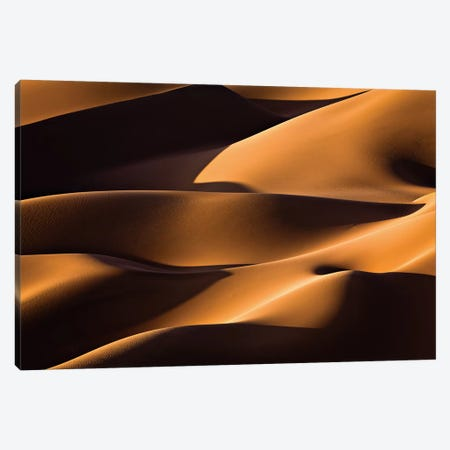 Light And Shadow Canvas Print #OXM2643} by Mohammadreza Momeni Canvas Wall Art