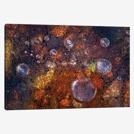 Winter Over Autumn Canvas Print #OXM2646} by Paolo Giudici Canvas Print