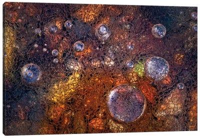 Winter Over Autumn Canvas Art Print