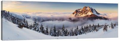 Golden Peak Canvas Art Print