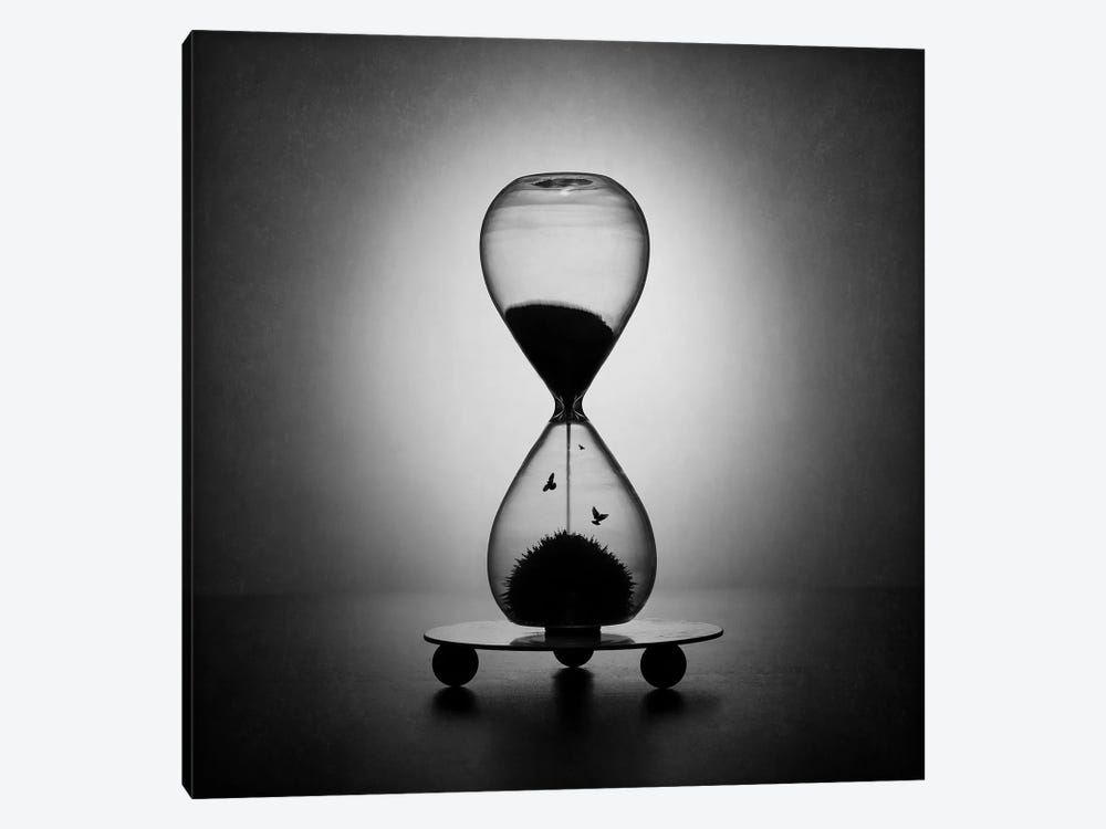 The Inexorable Passage Of Time by Victoria Ivanova 1-piece Canvas Print