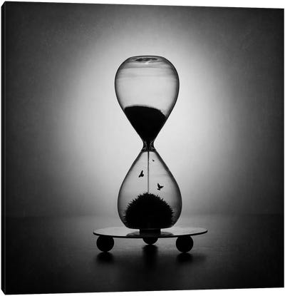 The Inexorable Passage Of Time Canvas Art Print