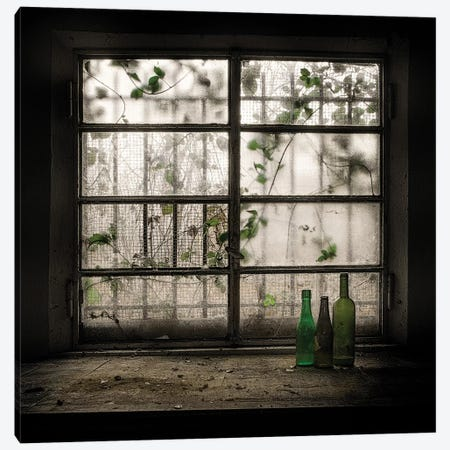 Still Life With Glass Bottle Canvas Print #OXM2671} by Vito Guarino Canvas Print