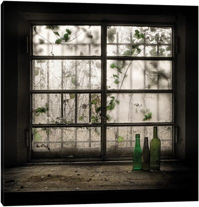 Still Life With Glass Bottle Canvas Art Print