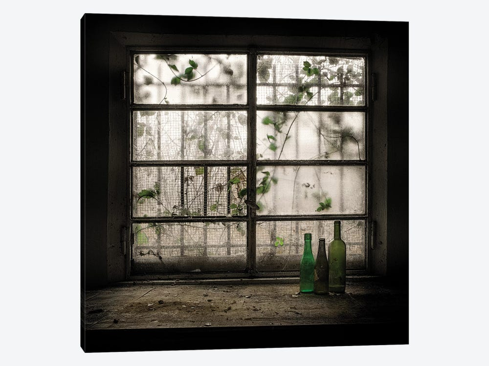 Still Life With Glass Bottle by Vito Guarino 1-piece Art Print
