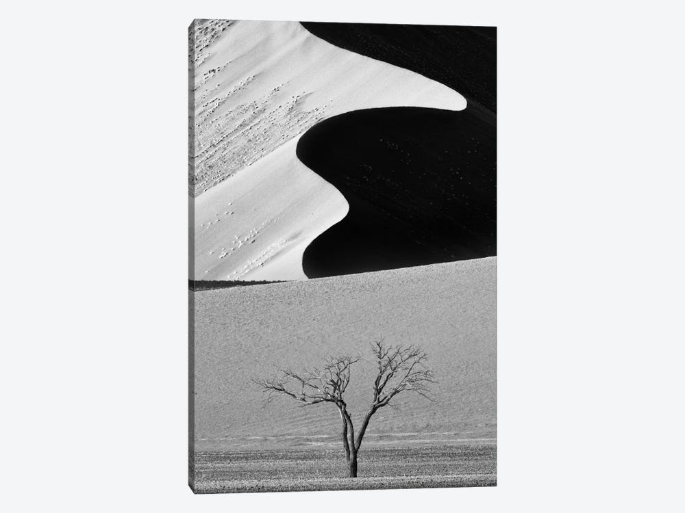 Dune Curves by Ali Khataw 1-piece Canvas Wall Art