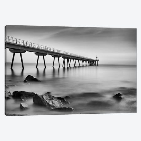 Pont del Petroli Canvas Print #OXM2685} by Antoni Figueras Canvas Art Print