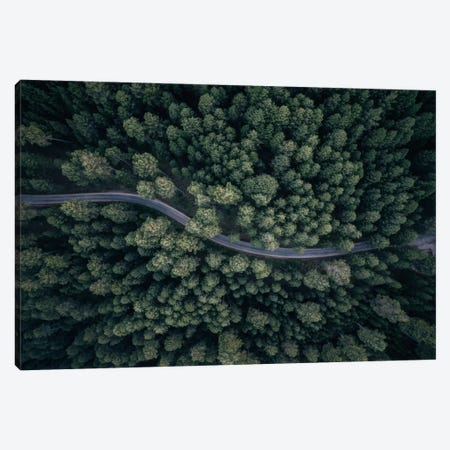 From Above II Canvas Print #OXM2688} by Antonio Carrillo Lopez Canvas Wall Art