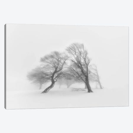 Together 3-Piece Canvas #OXM2729} by Fotoea Art Print