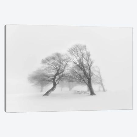 Together Canvas Print #OXM2729} by Fotoea Art Print
