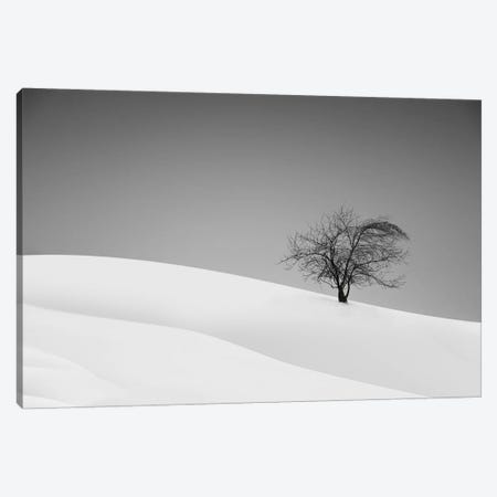 Loneliness Canvas Print #OXM2789} by Marta Walla Canvas Print