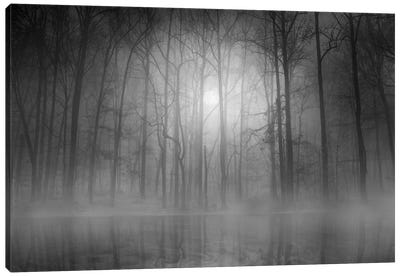 Morning Mist Canvas Print #OXM279