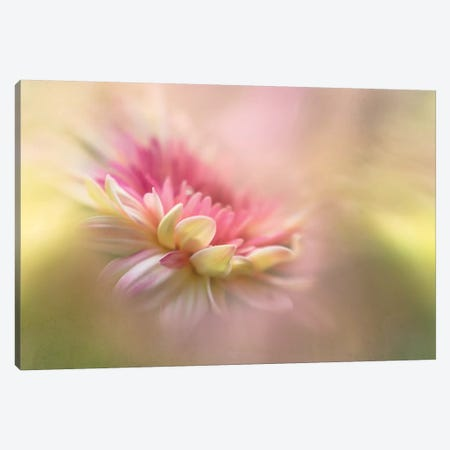 Summer Dreaming Canvas Print #OXM2814} by Penny Myles Canvas Wall Art