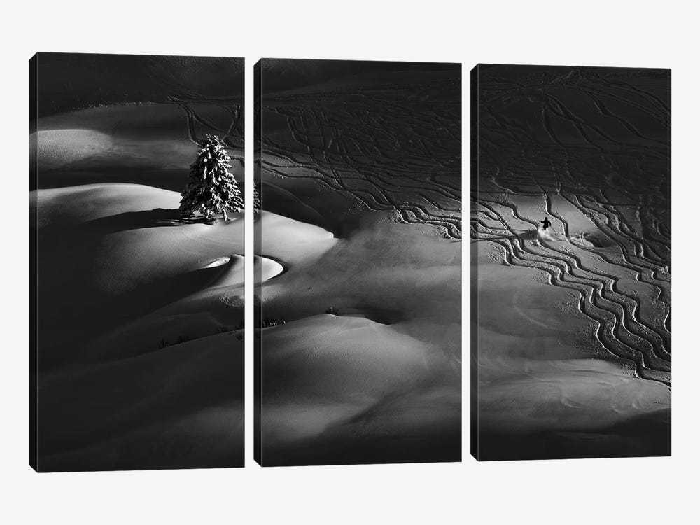 Passing By by Peter Svoboda 3-piece Canvas Artwork