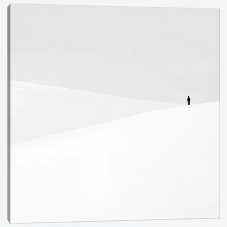 Just Another Empty Dream Canvas Print #OXM281} by Emilian Chirila Canvas Art