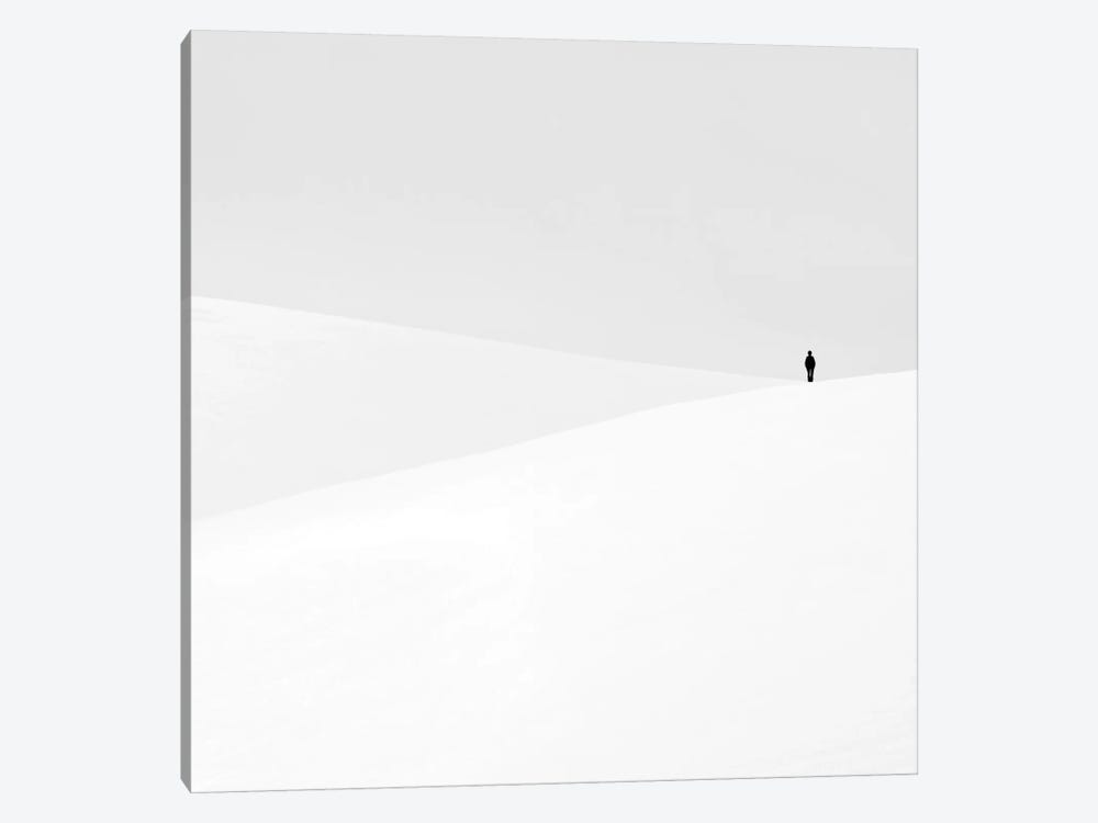 Just Another Empty Dream by Emilian Chirila 1-piece Canvas Art Print