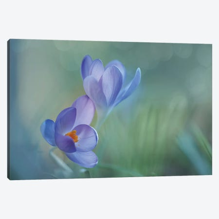 Lovely Couple Canvas Print #OXM2824} by Piet Haaksma Art Print