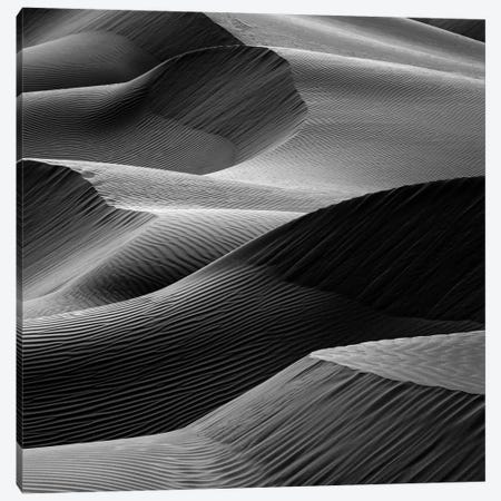 Waves In The Sand Canvas Print #OXM2825} by Pieter Joachim Van Canvas Art Print