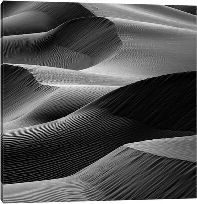 Waves In The Sand Canvas Art Print