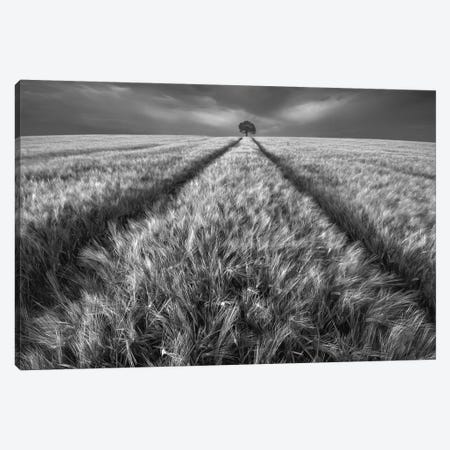 Alone Canvas Print #OXM2826} by Piotr Krol Art Print