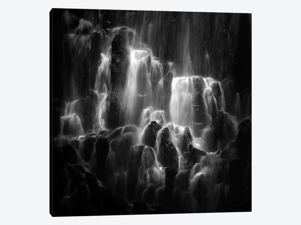 The Veiled Beings- Ramona Falls by Shenshen Dou 1-piece Canvas Print
