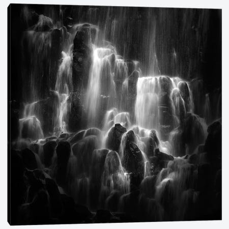 The Veiled Beings- Ramona Falls Canvas Print #OXM2834} by Shenshen Dou Canvas Wall Art