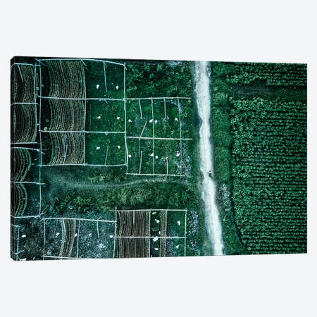 Land Of Idyllic Beauty Canvas Print #OXM2883} by Zhou Chengzhou Canvas Art