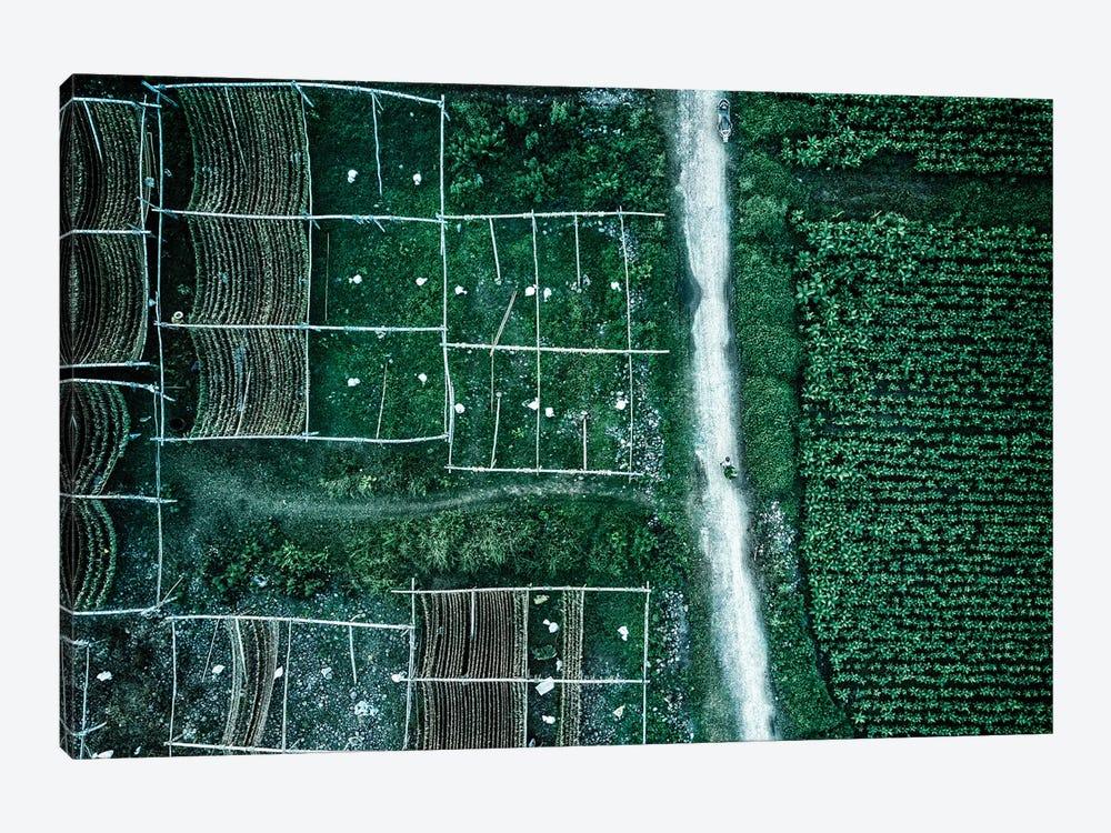 Land Of Idyllic Beauty by Zhou Chengzhou 1-piece Canvas Art Print