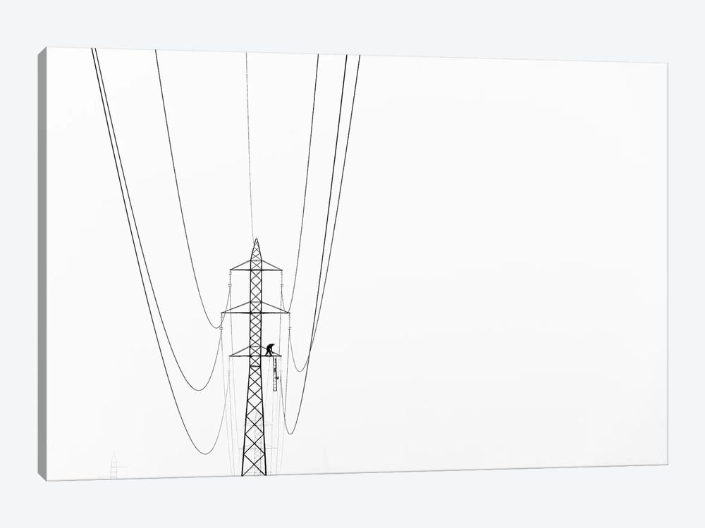 Balance by Kristjan Rems 1-piece Canvas Artwork