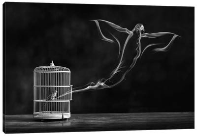 Freedom Bird Canvas Art Print