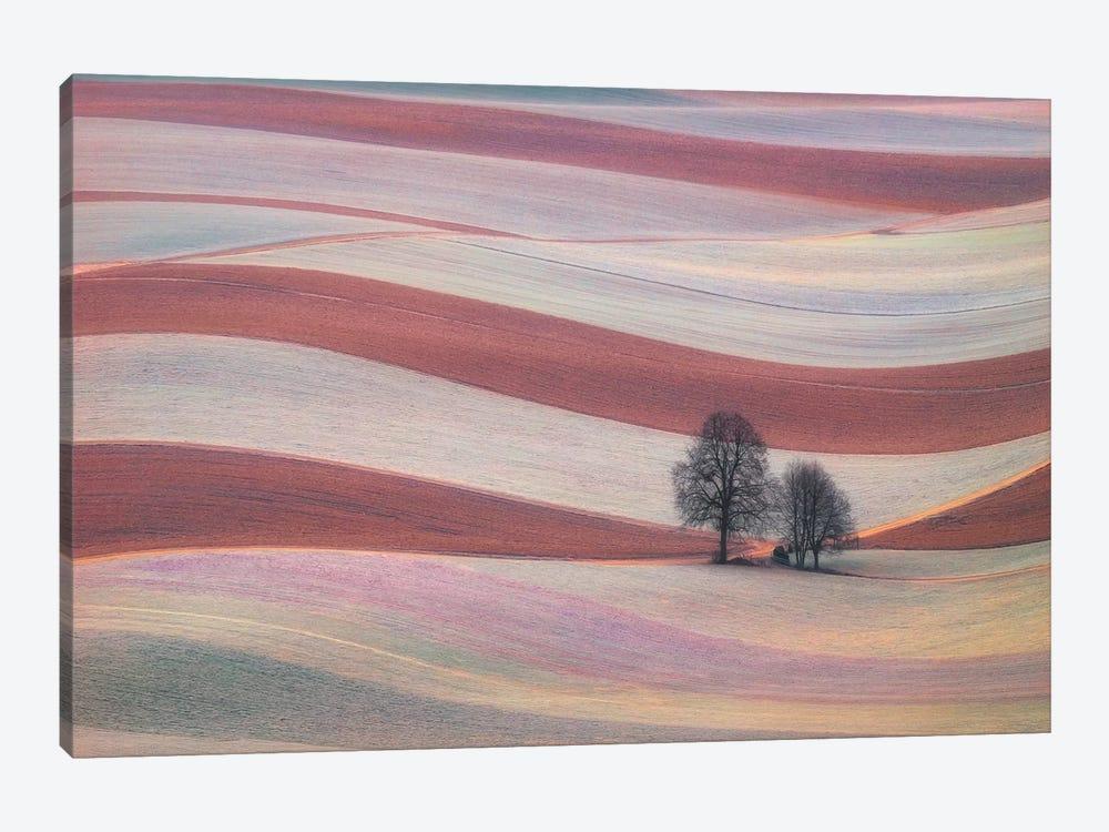 Waves by Ales Komovec 1-piece Canvas Print