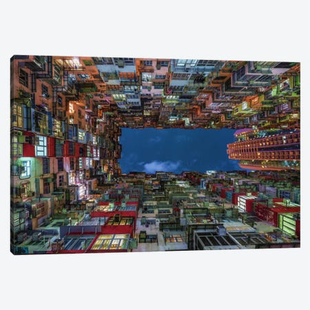 Uplift Canvas Print #OXM2910} by Andreas Agazzi Canvas Artwork