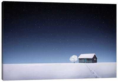 Winter I Canvas Art Print