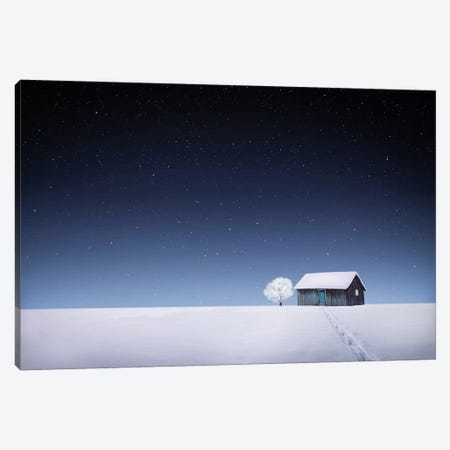 Winter I Canvas Print #OXM2932} by Bess Hamiti Canvas Wall Art