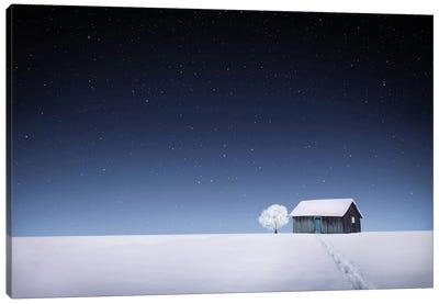 Winter I Canvas Art Print