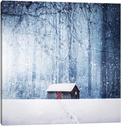 Winter II Canvas Art Print