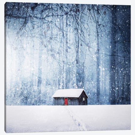 Winter II Canvas Print #OXM2933} by Bess Hamiti Canvas Artwork