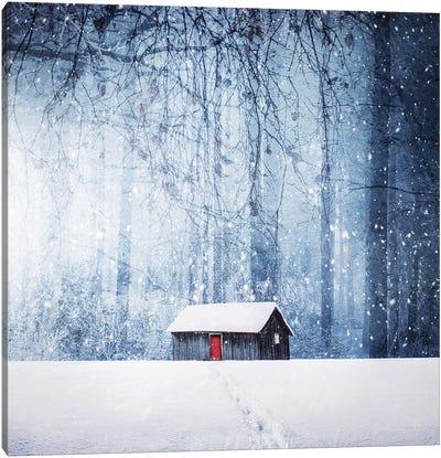 Winter II Canvas Art Print