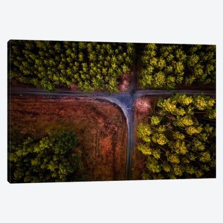Colour Carpet Canvas Print #OXM2935} by Birdinfcous Canvas Art Print