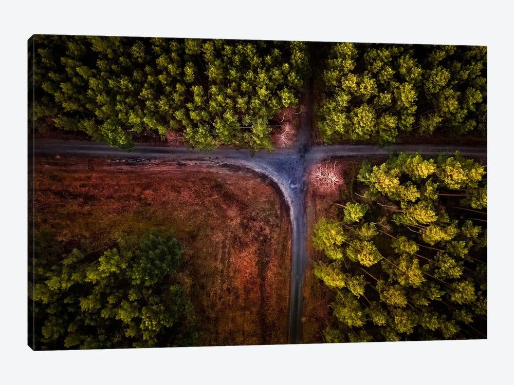 Colour Carpet by Birdinfcous 1-piece Canvas Art Print