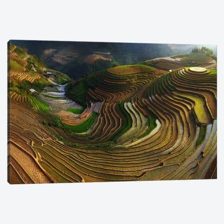 Mu Cang Chai, Vietnam I Canvas Print #OXM2961} by Đào Tấn Phát Art Print