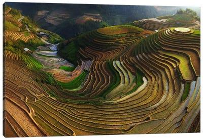 Mu Cang Chai, Vietnam I Canvas Art Print
