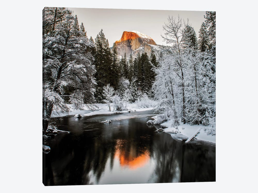 The Last Sunshine by David H. Yang 1-piece Canvas Print