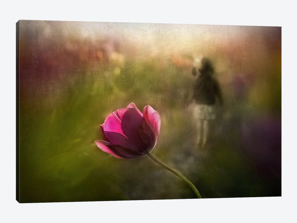 A Pink Childhood Memory by Shenshen Dou 1-piece Canvas Art