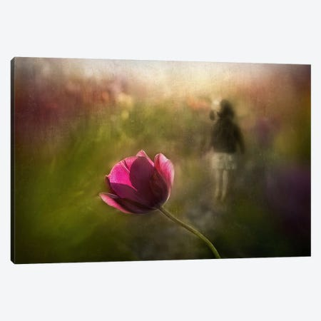 A Pink Childhood Memory Canvas Print #OXM299} by Shenshen Dou Art Print