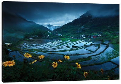 Batad Rice Terraces Canvas Art Print