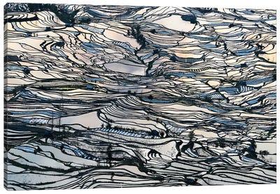 Earth Carpet Canvas Art Print