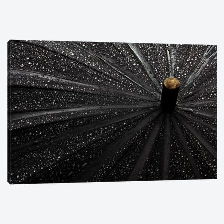 Drops Canvas Print #OXM3005} by Gilbert Claes Canvas Artwork